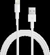 Câble Lightning 2m
